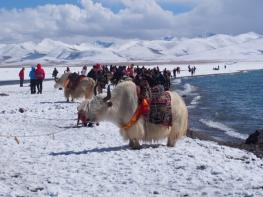 10 Days Lhasa-Tsedang-Gyangtse-Shigatse-Namtso Lake Tour